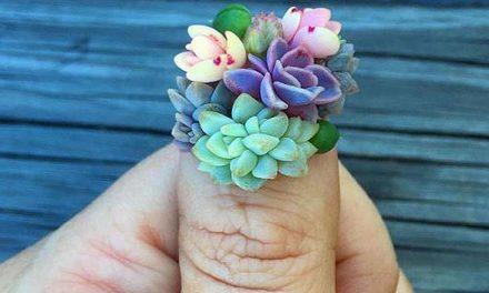 Succulent nails, lo último en uñas