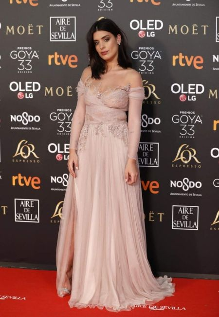 dulceida vestido goya 2019